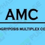 AMC Full form